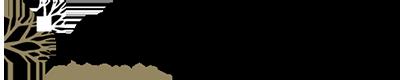 Neurological Services of Texas Logo